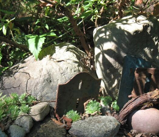 gardenpictures-011.jpg