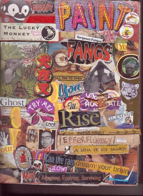 Journal 2006-2007