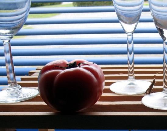 tomato-glass-window1