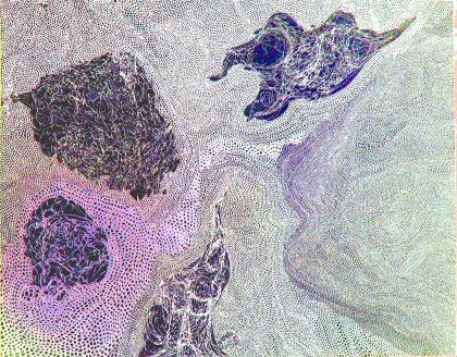 invertedFinalmosaic2
